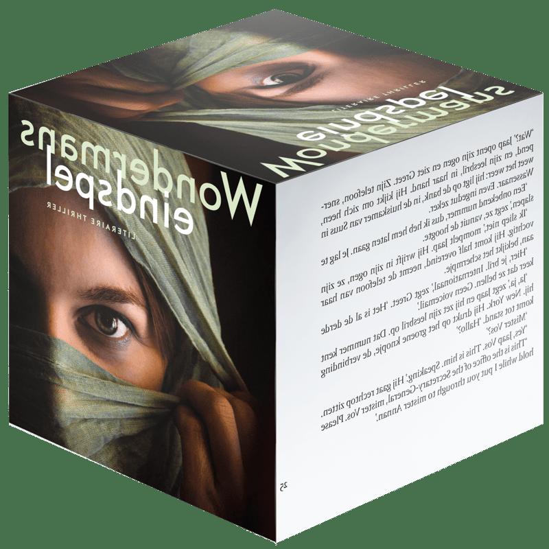 Willem Asman kubus boek Paradox